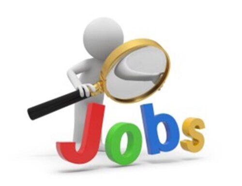 Insider Jobs… Should I still apply?